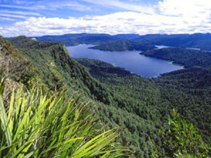 Lake Waikaremoana Track
