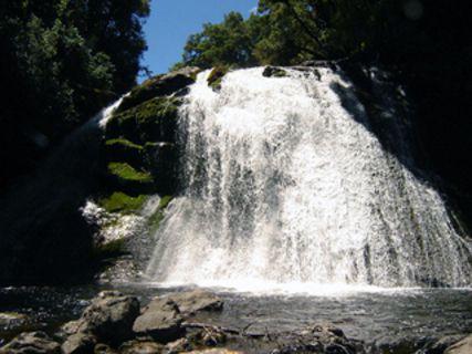Aniwaniwa Falls Track