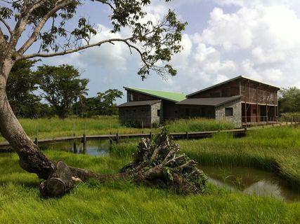 La Maison de la Mangrove TAONABA