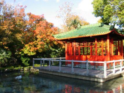 Osmanthus Garden