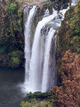 Whanganui Falls