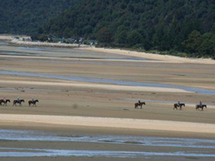 Marahau Horse Treks