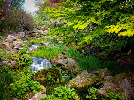 Real jard n bot nico de edimburgo en edinburgo inglaterra for Jardin botanico tarifas