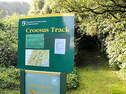 The Croesus Track