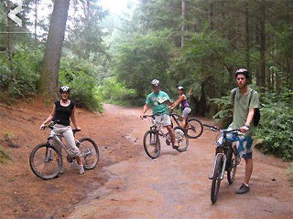 Moutain Bike Rotorua
