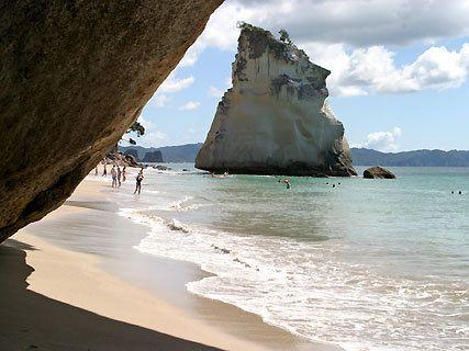 Réserve marine Te Whanganui-A-Hei