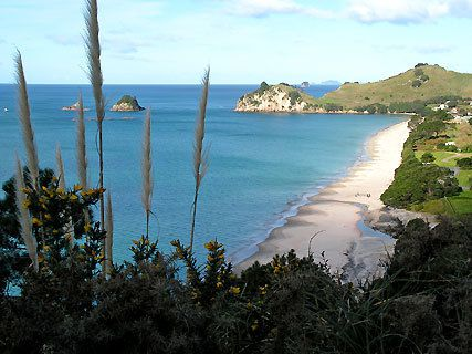 Te Pare Point