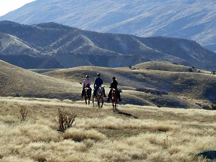 Rabbit Range Horse Trekking