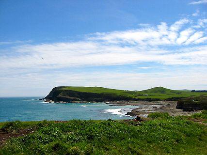 Fiords et Southland
