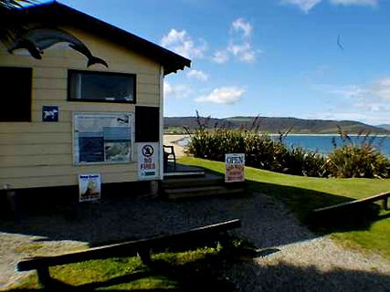 Curio Bay Holiday Park