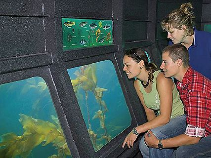 Underwater Explorer Cruises