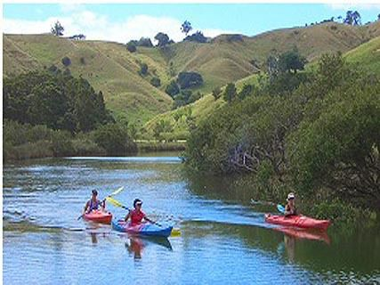 Puhoi River Canoe Hire