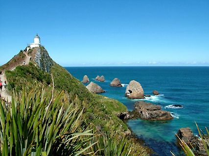 Nugget Point and Catlins Tours