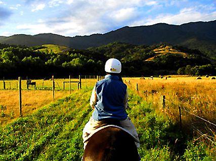 Fyffe View Horse Treks