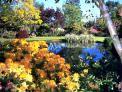 Trott's Garden