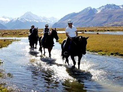 Staveley Horse Treks