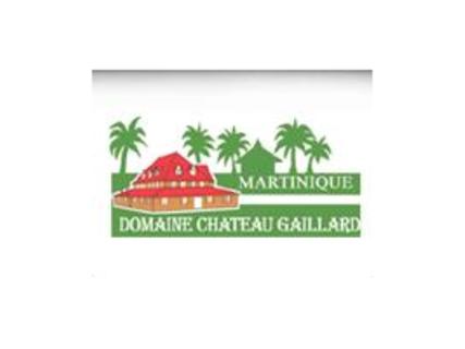 Le Domaine de Château Gaillard