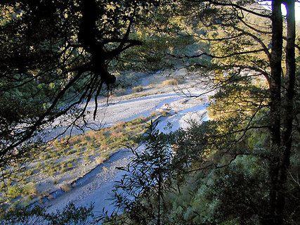 Nga Taonga Trail