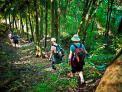 Walk Gisborne