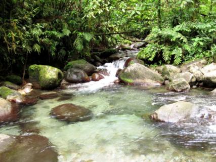 Rivière de l'Alma