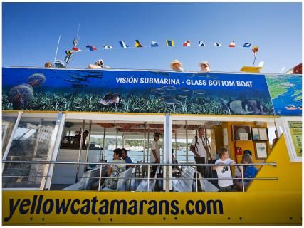 Yellow Catamarans