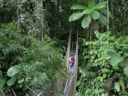 Wild Martinique Rando