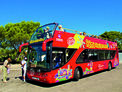 Bus Citysightseeing
