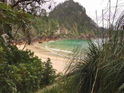 Pokohino Beach