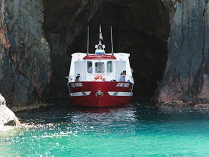 Le Pass'partout, visites guidées en bateau
